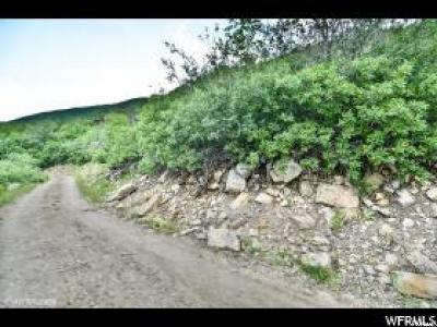 Wasatch County Residential Lots & Land For Sale: 1241 N Aspen W