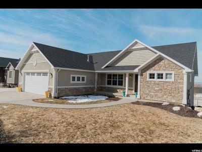 Smithfield Single Family Home For Sale: 387 S Cardon Ridge Dr E
