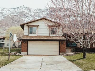 Weber County Single Family Home For Sale: 2942 N 1150 E
