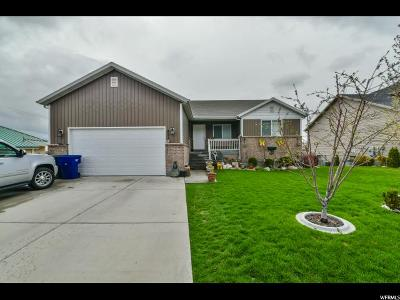 Weber County Single Family Home For Sale: 421 N Madison Ave