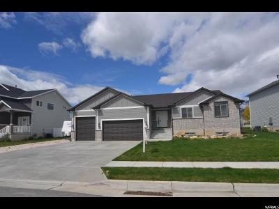North Ogden Single Family Home Under Contract: 80 E 1825 N