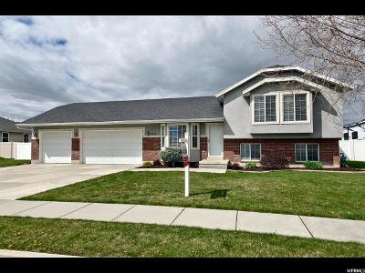 Weber County Single Family Home For Sale: 3040 W 3600 N
