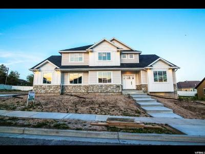 Lehi Single Family Home For Sale: 3456 Hillside Dr