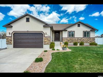Santaquin Single Family Home For Sale: 202 W 580 S
