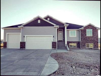 Tremonton Single Family Home For Sale: 831 N 2300 W