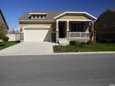 South Jordan Single Family Home For Sale: 11183 S Village Grove Ln