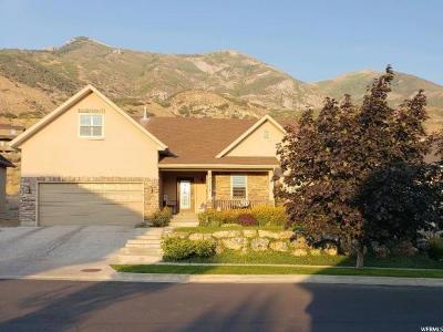 Cedar Hills Single Family Home For Sale: 10346 Avondale Dr
