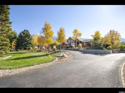 Elk Ridge Single Family Home Under Contract: 482 Salem Hills Cir