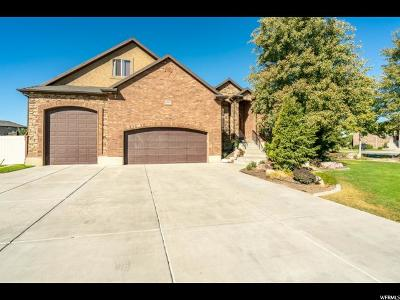 Weber County Single Family Home For Sale: 2487 N 2575 W