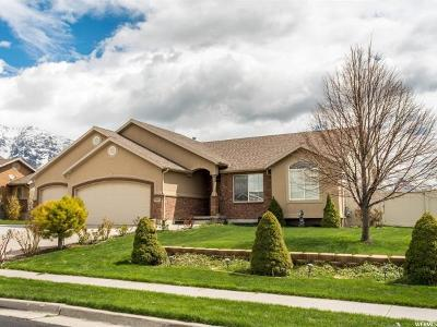 Weber County Single Family Home For Sale: 3592 N Remuda Dr