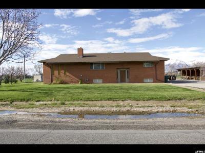 Spanish Fork Single Family Home For Sale: 8800 S 315 E