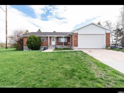 Davis County Single Family Home For Sale: 2995 W Gordon Ave N