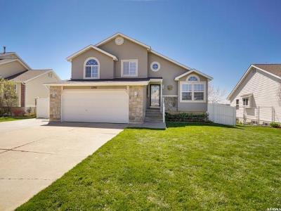 Weber County Single Family Home For Sale: 1395 E 5875 S