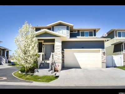 Midvale Single Family Home For Sale: 812 W Tamsin Ct