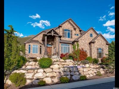 Draper Single Family Home For Sale: 13257 S Laurel Park Ln