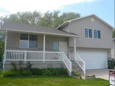 Logan Single Family Home For Sale: 984 Rainbow Dr
