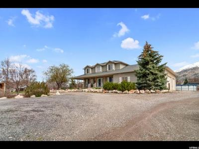 Single Family Home For Sale: 2700 W 7200 N