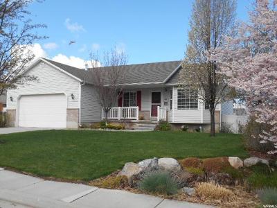 Santaquin Single Family Home For Sale: 172 S 730 E