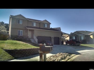 Eagle Mountain Single Family Home For Sale: 3799 E Wyatt Earp N