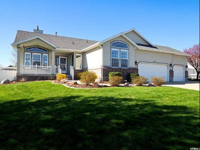 South Jordan Single Family Home Under Contract: 3747 W Elk Park Ct S