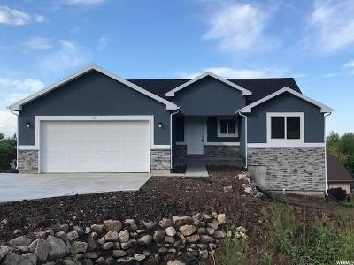 Weber County Single Family Home For Sale: 189 W Pleasant View Dr #1