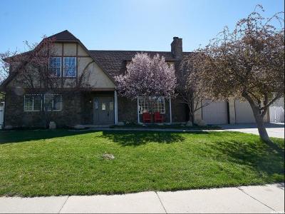 Sandy Single Family Home For Sale: 11591 S Terendale Ln E