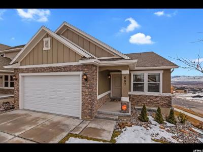 Lehi Single Family Home For Sale: 687 W 4050 N