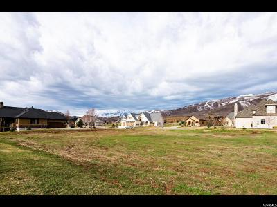 Wasatch County Residential Lots & Land For Sale: 905 S Coldwater Way