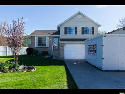 Kaysville Single Family Home For Sale: 1535 S 250 E