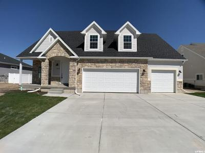 Weber County Single Family Home For Sale: 3320 S 2600 W