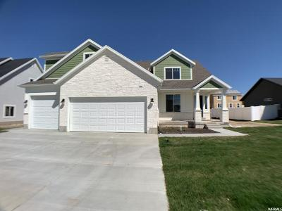 Weber County Single Family Home For Sale: 3330 S 2600 W