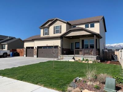 Tooele County Single Family Home For Sale: 216 S Ranch Rd E