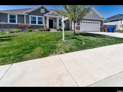 Eagle Mountain Single Family Home For Sale: 8857 N Suffolk Ln E