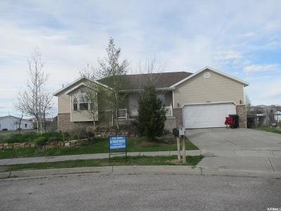 Tremonton Single Family Home For Sale: 998 S 800 W