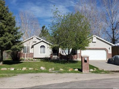 Tooele County Single Family Home For Sale: 140 Maple St