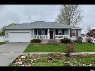 Tooele County Single Family Home For Sale: 1056 S Davenport Dr