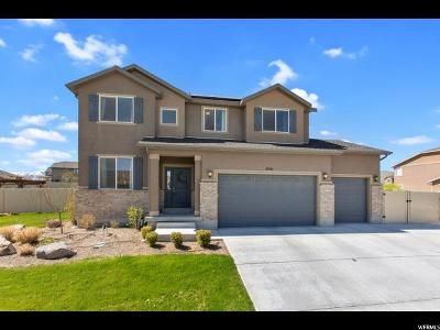 Eagle Mountain Single Family Home For Sale: 8981 N Skye Loop