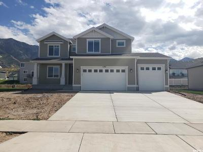 Santaquin Single Family Home For Sale: 1057 S Red Ledges Rd #90