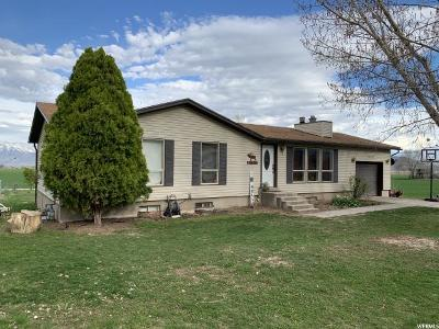 Tremonton Single Family Home For Sale: 9560 N 11600 W