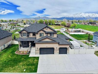 Lehi Single Family Home For Sale: 284 W Lehi Ranch Rd