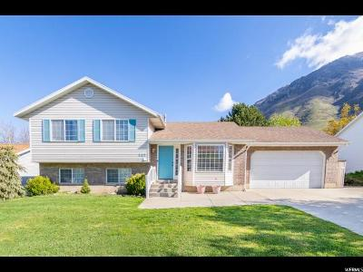 Springville Single Family Home For Sale: 247 E 1150 N