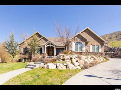Orem Single Family Home For Sale: 925 E 1810 N