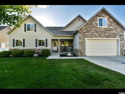 Cedar Hills Single Family Home For Sale: 10249 N Tamarack E
