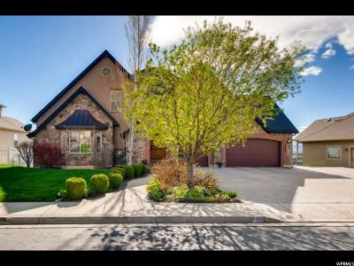 Cedar Hills Single Family Home For Sale: 9489 N Canyon Heights Dr