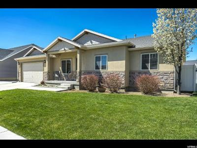 Lehi Single Family Home For Sale: 1498 S Spring Creek Dr