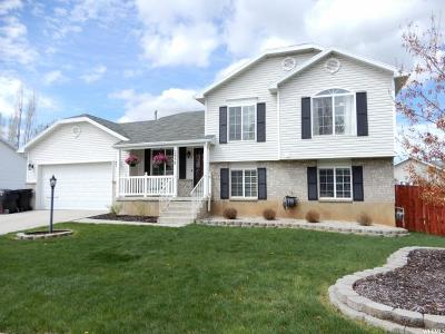 Syracuse Single Family Home Under Contract: 2030 Dahl Ln