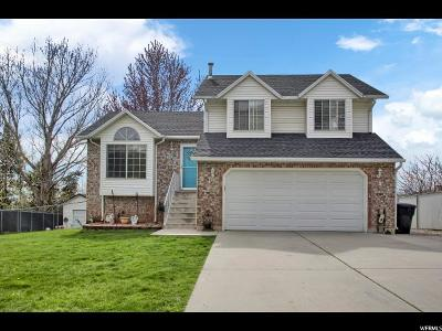 North Ogden Single Family Home Under Contract: 2869 N 875 E