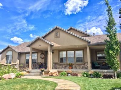 Perry Single Family Home For Sale: 2687 S 775 W