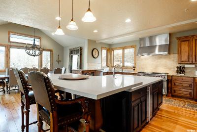 Park City Single Family Home For Sale: 962 Aerie Dr