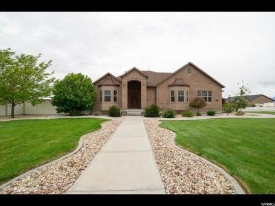 Grantsville Single Family Home Under Contract: 867 E Rodeo Dr S